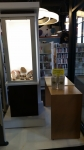 Display case at Midland Centennial Library